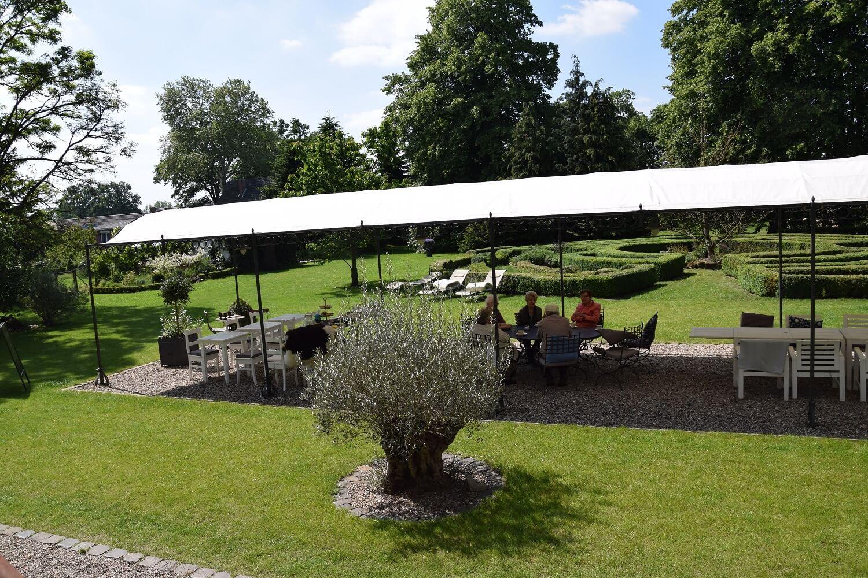 Gutshaus Volzrade Garten Olivenbaum