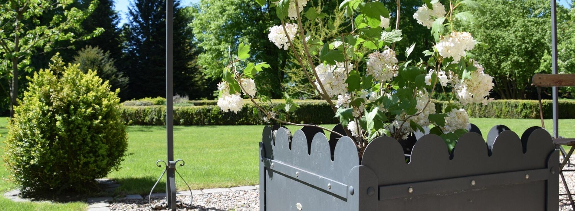Gutshaus Volzrade Garten Hortensie